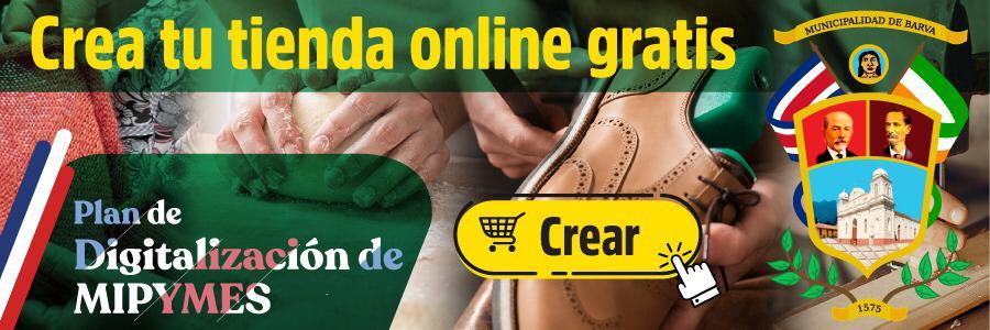 Crear Página Web y Tienda Online Barva